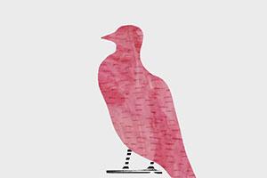 Птица на подоконнике би-2